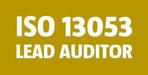 ISO 13053 : SIX SIGMA – Lead Auditor